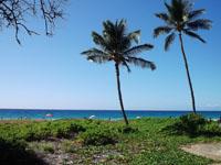 図1 ハプナビーチ。